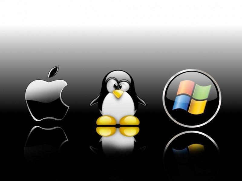 Предустановка ОС (Windows, Linux, MacOS)