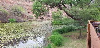 Zenzele River Lodge Deck View