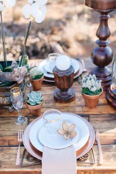003-Bushveld-Glam-Wedding-Inspiration-by