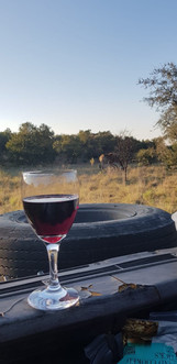 Zenzele River Lodge Game Viewing