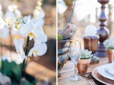 005-Bushveld-Glam-Wedding-Inspiration-by