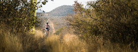 Mabalingwe-Game-Reserve-to-host-Mountain