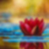 rachel relaxation and meditation yoga cl