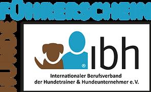 Logo-Var-Fuehrerschein-transparent.png
