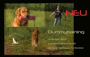 dummy retriever hundetraining hundesport