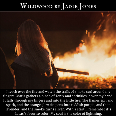 Wildwood by Jadie Jones.png
