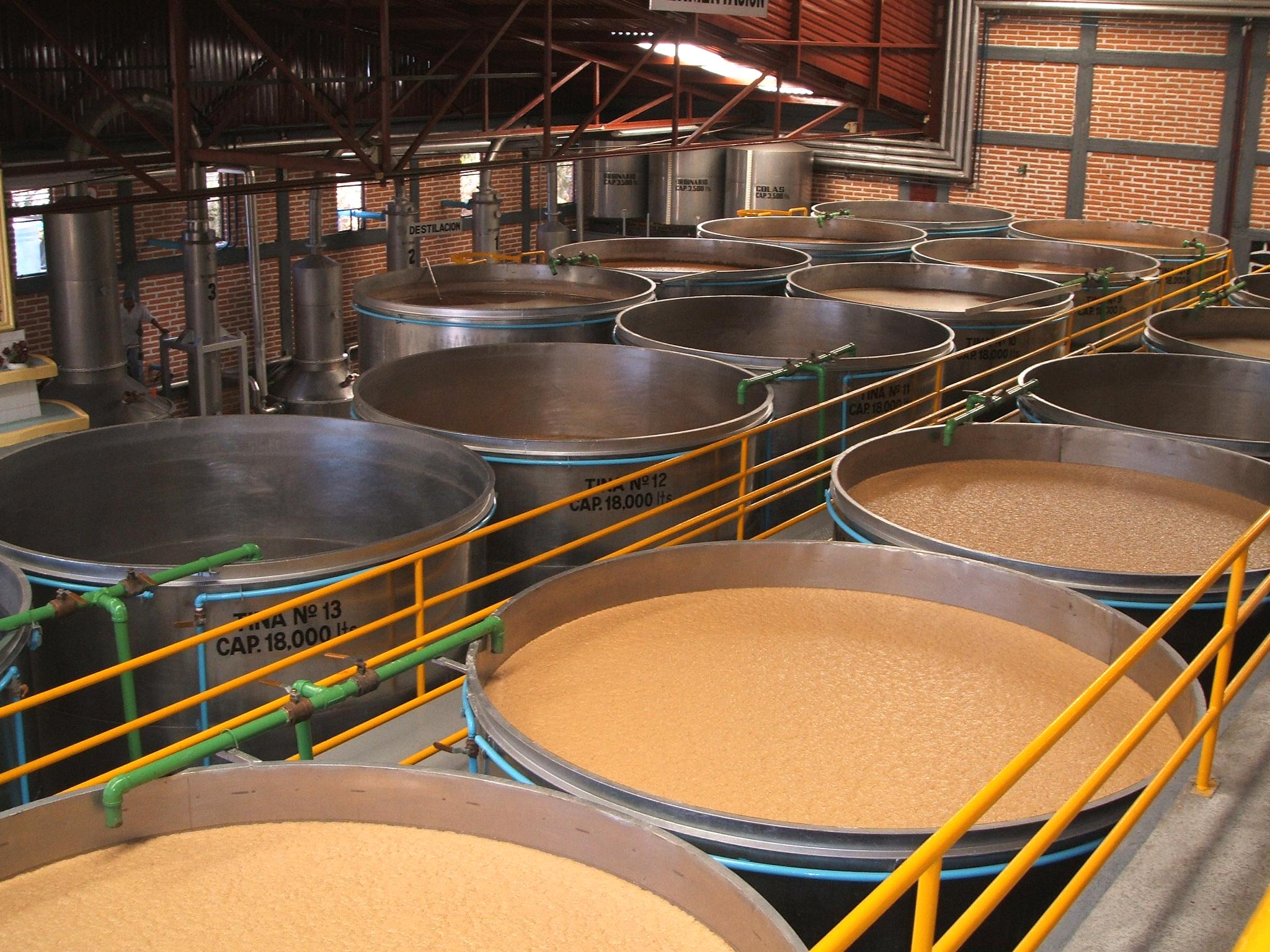 Foto fermentacion
