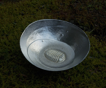 pewter Trilobite bowl