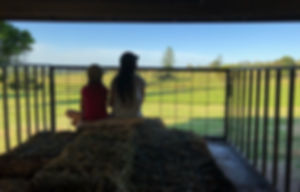 hay ride, farm open day