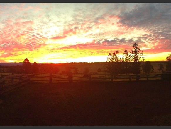 Neumgna sunsets