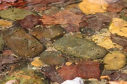 Picture of Colorful Stones of the Powell River which surrounds Well Being Retreat Center for 2 1/2 miles