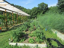 Organic Vegetable Garden at Well Being Retreat Center