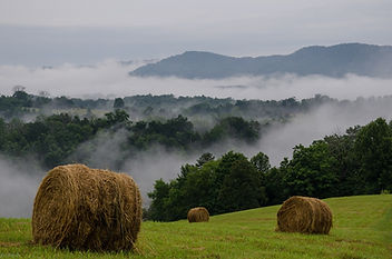 Hay Bales on Top of Hill at Well Being R