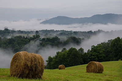 Hay Bales on Top of Hill at Well Being Retreat Center.jpg