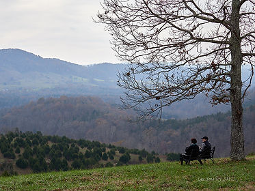 Top of Hill with Two on Bench - Nov 2017