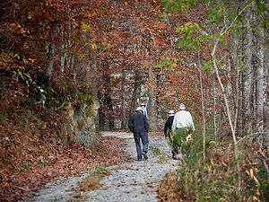 Photo of guests ay Well Being Retreat Center walking along Turtle Bend and the Powell River in Autumn