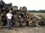 big wood.jpg