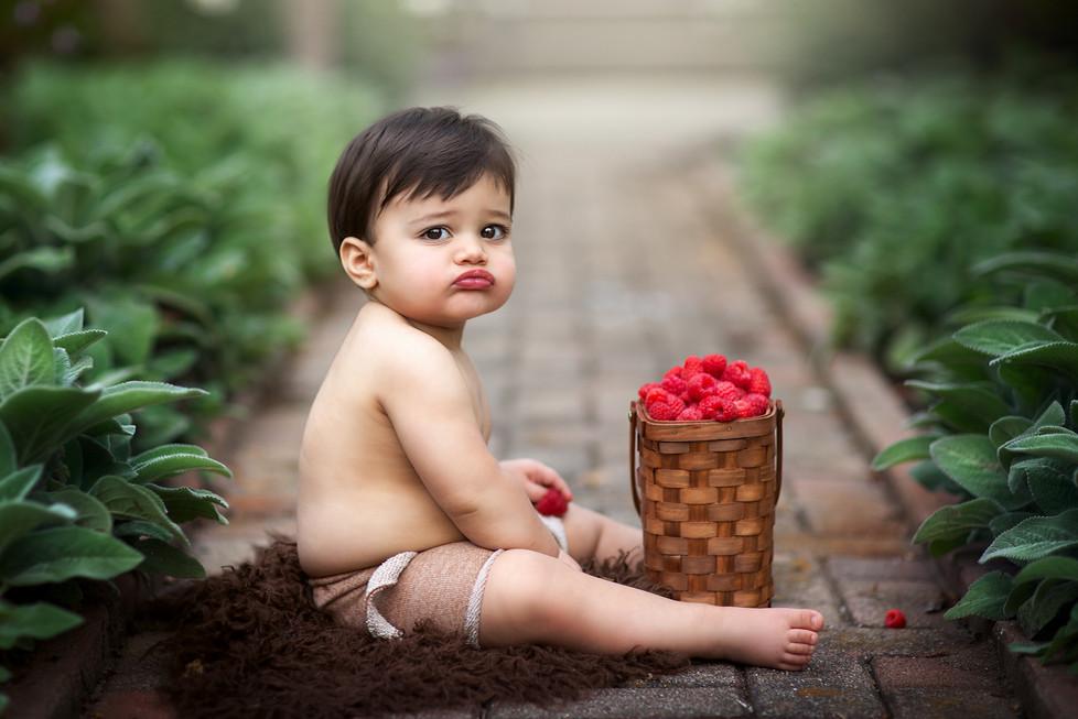Baby Aidan turned one    Milestone session, Cincinnati