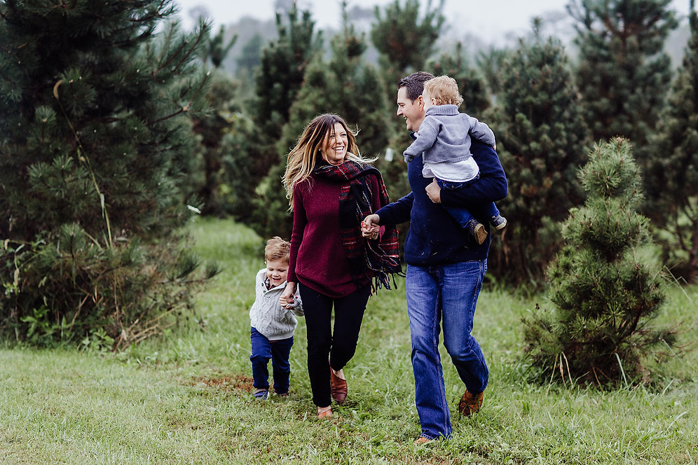 Christmas Tree Farm Mini Sessions.Christmas Tree Farm Mini Sessions Outside And Up To 5 People