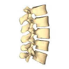 Do I need surgery for my bulging discs?