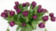 Fleurs Fraîches home page