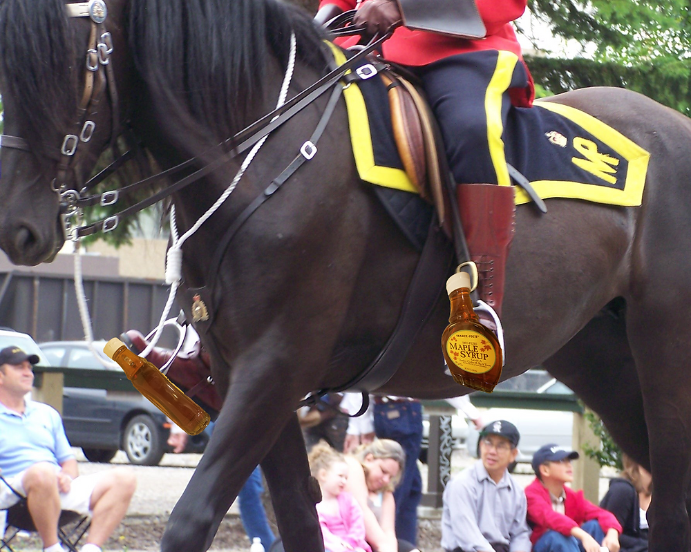 Maple Syrup stirrup on Canadian mountie