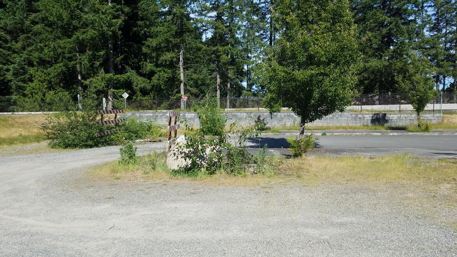 Trash Pick-Up: Chehalis Western Trail, Olympia