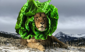 Lion with a mane of romaine lettuce