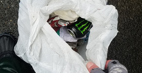 Trash Pick-Up: Ensign Rd, Olympia