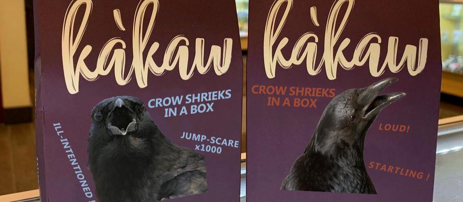 Kàkaw   Crow Shrieks in a Box