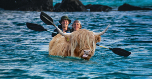 Two guys row oars on/in a Yak that is swimming in the water.