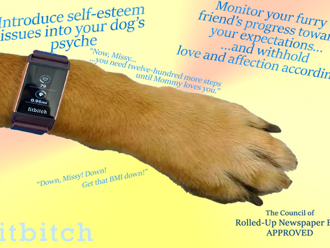 fitbitch   Fitness Devolved