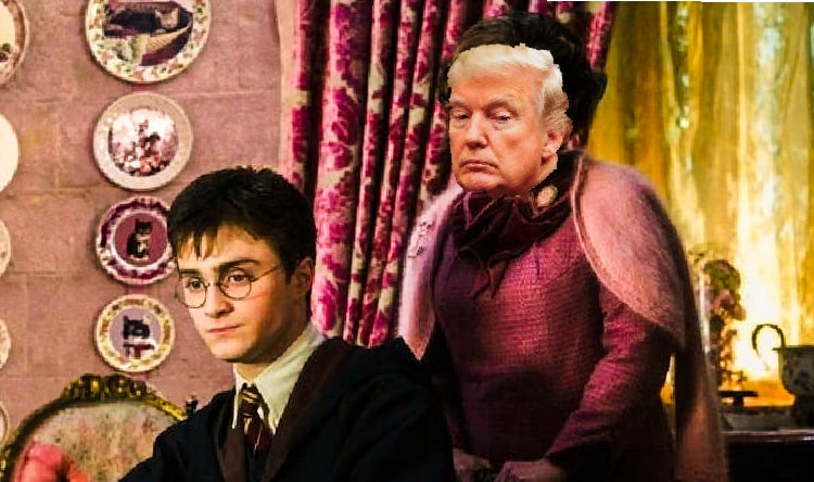 Donald Trumps stands behind Harry Potter, physically, not supportively.""