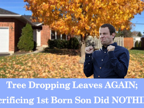 Tree Dropping Leaves AGAIN; Sacrificing 1st Born Son Did NOTHING