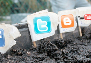 Social Media is a Garden: Watching Your Internet Presence Take Hold and Prosper