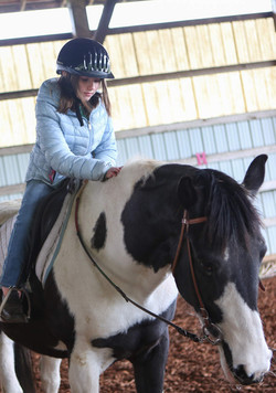 Learners of all levels are welcome at Animal Rescue Teaching For All. (Kelly Lyon_The Register-Guar