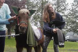 Romeo, a Shetland pony, is dressed by Tammy McNally, left, and Dahlia Reckers-Gatlin, 13