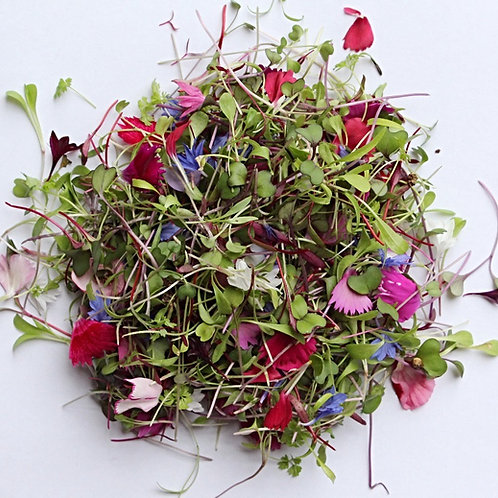 Confetti Sprouts Mix