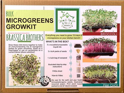 Brassica Brothers BULK GROWKIT