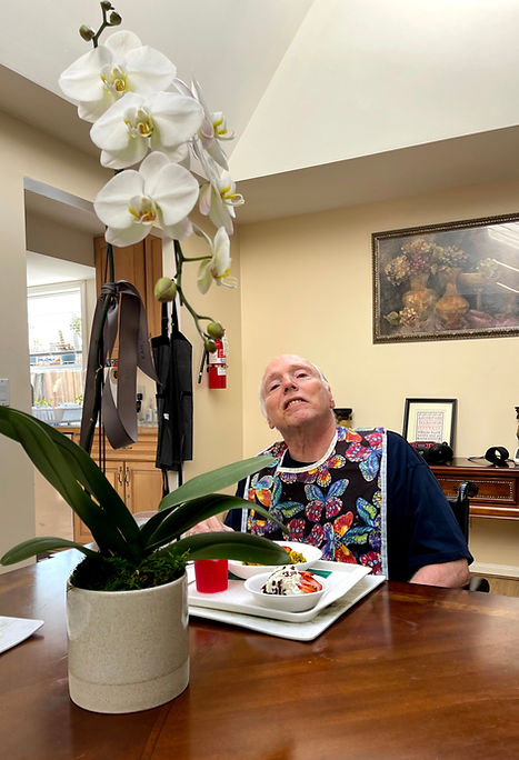 One of our residents eating lunch in our dining room next to one of our beautiful orchids.