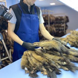 Видео-каталог коллекции дикого соболя