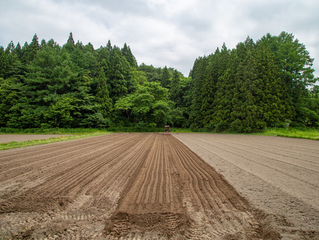 東北牧場の米づくり🌾