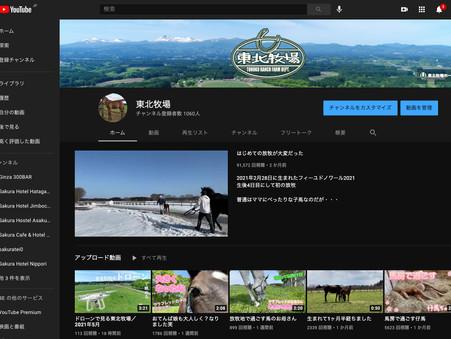 YouTubeチャンネル登録者数1,000人突破!!