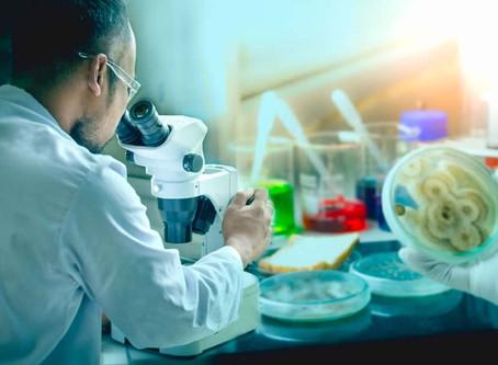 Waarschuwing gezaghebbend medisch tijdschrift: Ook schimmels worden resistent tegen onze medicatie!
