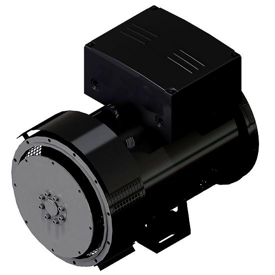 60 kW Generator Head 224E