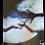 Thumbnail: DRIFT signerad affisch