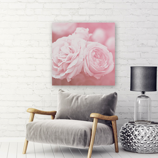 Softly pink roses