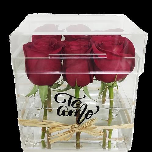 Caja acrílico 6 rosas + mensaje