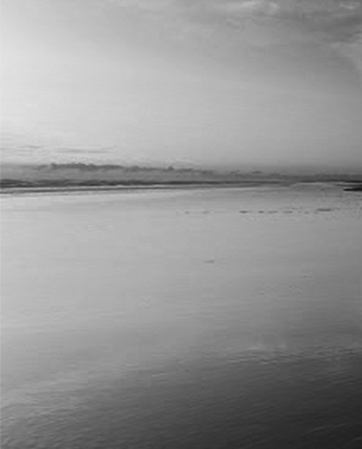"""Cooltide"" photograph B/W"