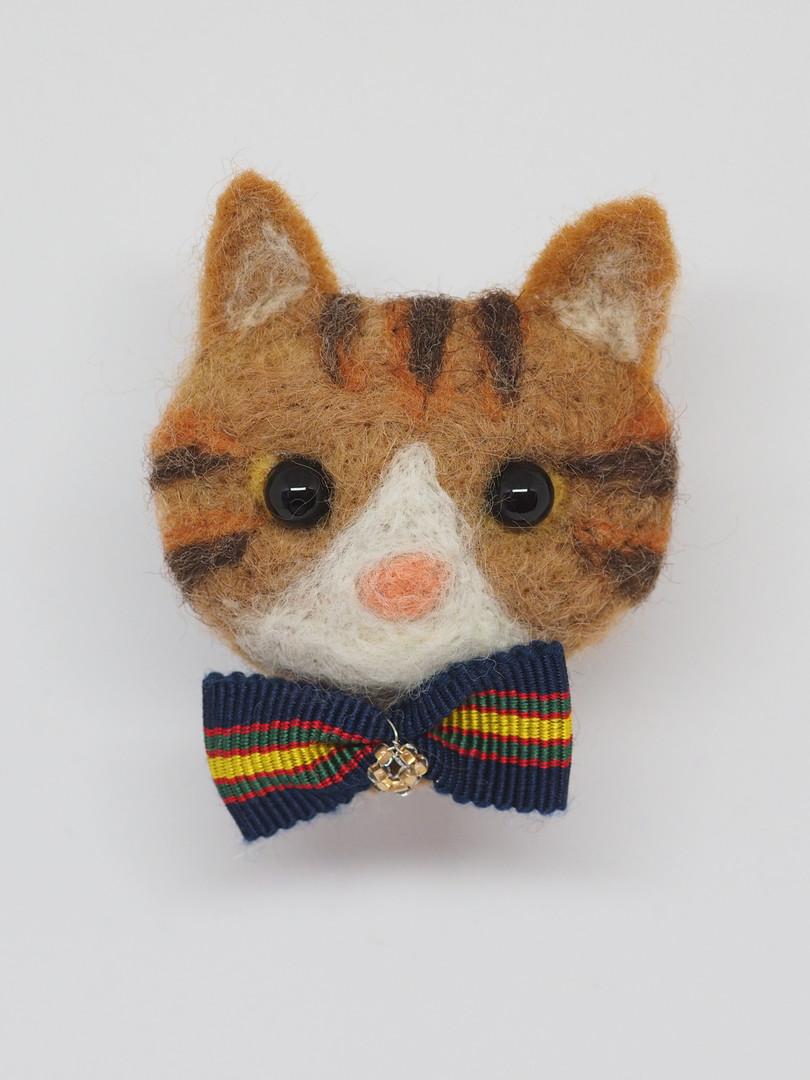 FACE シマ猫
